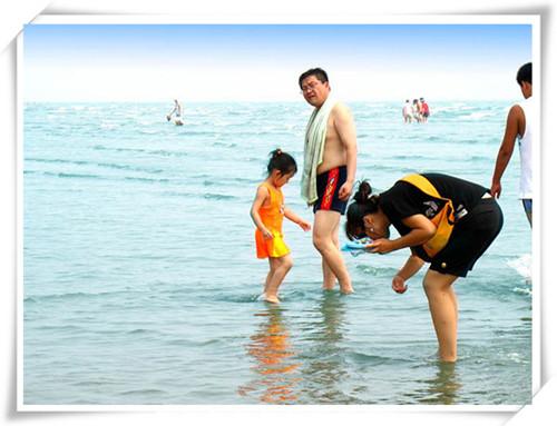 大鹿岛海滩捡贝壳1