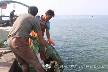 渔家体验游2